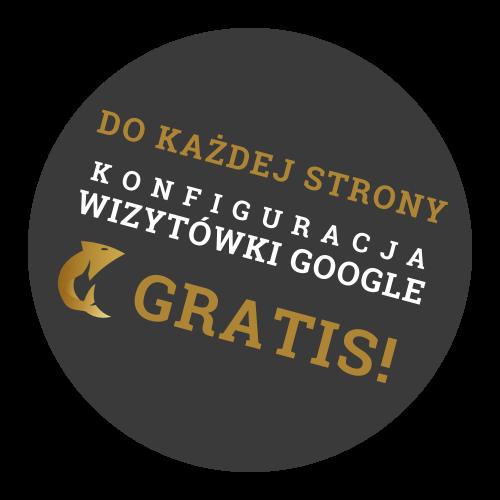Wizytówka Google gratis do strony